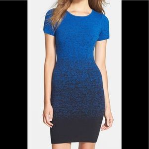Felicity and Coco short sleeve sweater dress